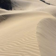 Dune di Maspalomas  - Gran Canaria