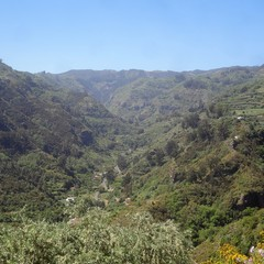 Parque Rural de Doramas a Valleseco
