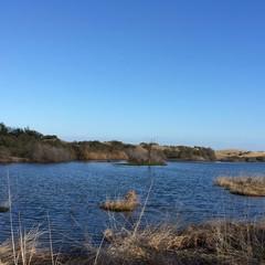 Riserva naturale di Maspalomas  - Gran Canaria