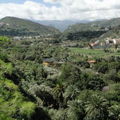 Tafira Alta