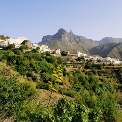 Tajeda a Gran Canaria