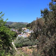 Vega San Mateo