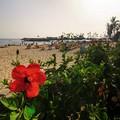 Spiaggia di Anfi del Mar