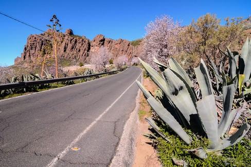 Il clima e il territorio di Gran Canaria
