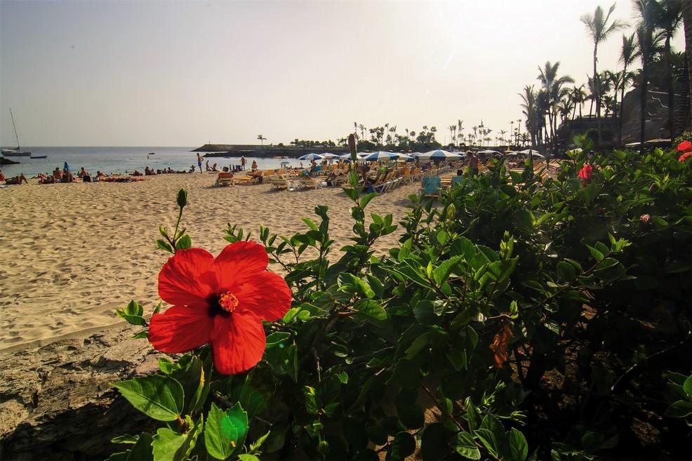 Playa Anfi del Mar a Arguineguín Mogán di Gran Canaria